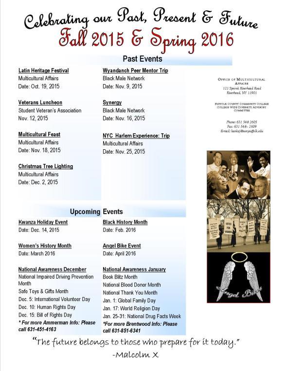 Newsletter Diversity 2015 December